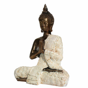 BUDDHA IN RESINA TIBETANO CM 20